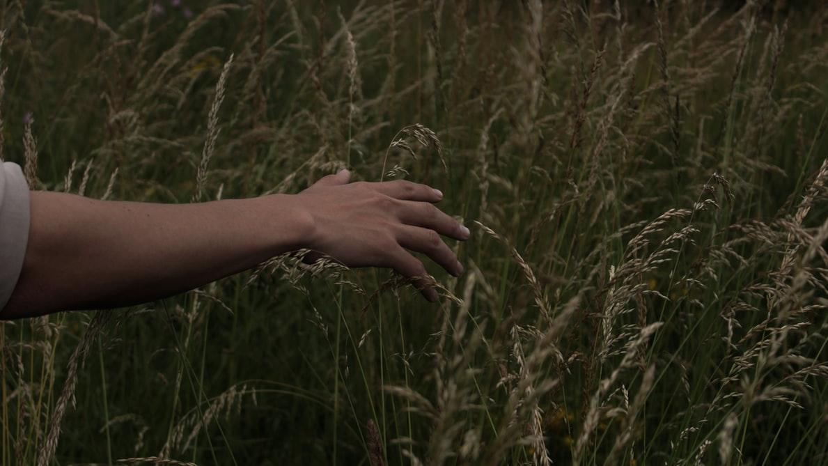 NLP & Voelen: wat is voelen nou eigenlijk?