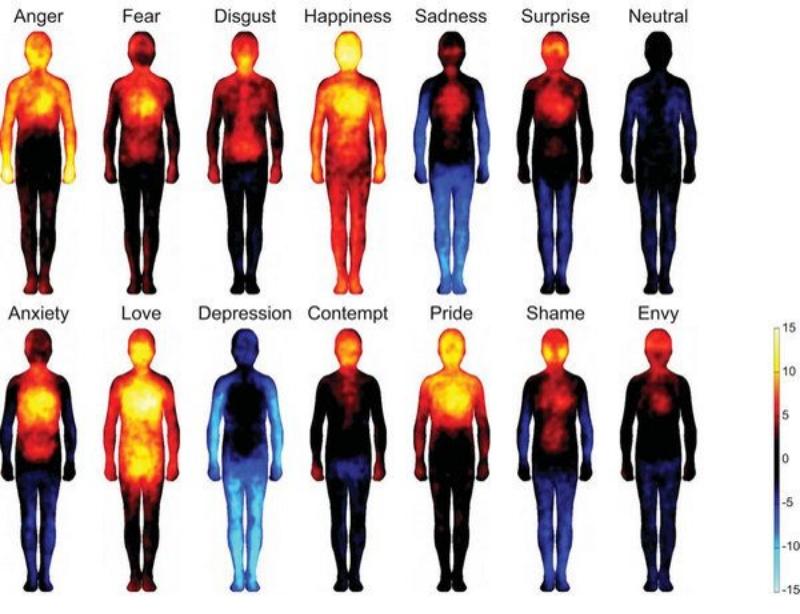 Ons zenuwstelsel en stress; Stress, hoe kom je er aan, hoe kom je er vanaf!