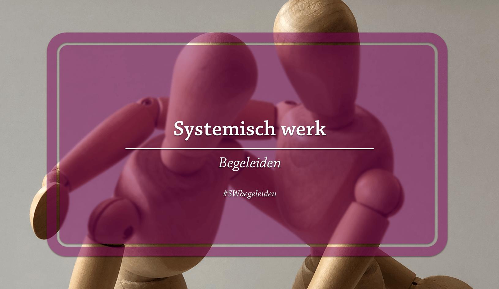 Systemisch werk begeleiden - eerste verdieping - desktop - persoonlijke groei
