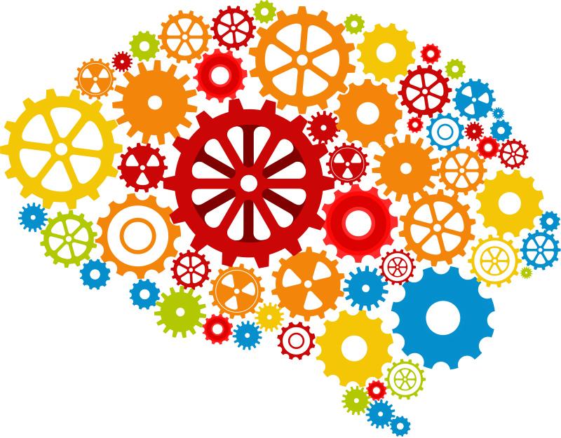 Hoe leer jij? Het 4-staps leermodel in de praktijk