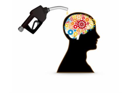 16.3 Verschillende breinfunties